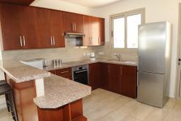 Кипр, Аргака : Вилла с 3-мя спальнями, с бассейном, тенистой террасой с патио, расположена в Полисе