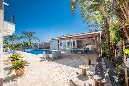 Территория. Кипр, Санрайз Протарас : Роскошная вилла с 5-ю спальнями, с бассейном, беседкой с летней кухней и тренажерным залом