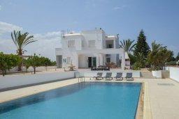 Бассейн. Кипр, Пернера : Потрясающая вилла с 6-ю спальнями,  с большим бассейном, в окружении красивого сада с цитрусовыми деревьями