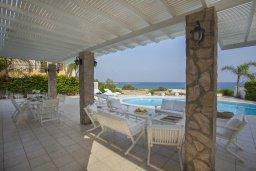 Территория. Кипр, Каво Марис Протарас : Просторная вилла на берегу моря с 4-мя спальнями, с частным бассейном, внутренним двориком с современной садовой мебелью
