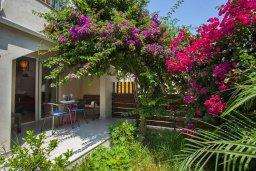 Территория. Кипр, Центр Айя Напы : Комфортабельный апартамент в центре Айя Напы с отдельной спальней, террасой с барбекю и красивым садом