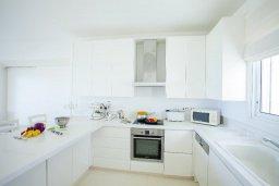 Кухня. Кипр, Коннос Бэй : Вилла у моря в стиле Греческих островов, с большим садом и меблированной террасой с барбекю