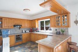 Кухня. Кипр, Сиренс Бич - Айя Текла : Прекрасная современная вилла с 3-мя спальнями, с частным бассейном, просторным садом с патио и барбекю