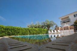 Бассейн. Кипр, Пернера Тринити : Потрясающая вилла с видом на море, с 3-мя спальнями, с бассейном, солнечной террасой с патио и барбекю