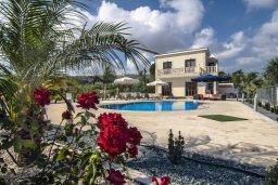 Территория. Кипр, Корал Бэй : Потрясающая вилла с видом на море, с 3-мя спальнями, с бассейном, с тенистой террасой с патио и кипрским барбекю