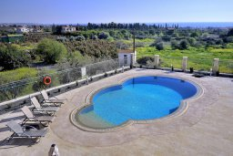 Бассейн. Кипр, Корал Бэй : Потрясающая вилла с видом на море, с 3-мя спальнями, с бассейном, с тенистой террасой с патио и кипрским барбекю