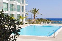 Бассейн. Кипр, Фиг Три Бэй Протарас : Шикарный апартамент с прекрасным видом на Средиземное море, в 100 метрах от пляжа, с гостиной, отдельной спальней и балконом
