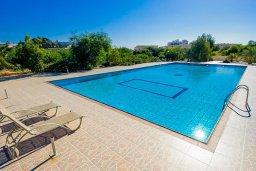 Бассейн. Кипр, Нисси Бич : Современный апартамент с гостиной, отдельной спальней и большой террасой