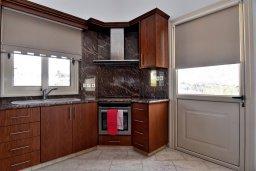Кухня. Кипр, Си Кейвз : Роскошная вилла класса люкс, с 5-ю спальнями, с бассейном, зелённым двориком, барбекю и винным погребом