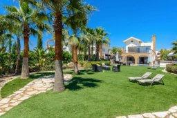 Территория. Кипр, Ионион - Айя Текла : Шикарная вилла с потрясающим  видом на море,  с 3-мя спальнями, с бассейном и зелёной территорией с джакузи, патио и барбекю