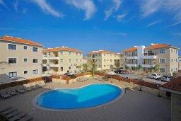 Бассейн. Кипр, Каппарис : Прекрасный апартамент с двумя спальнями и балконом, в комплексе с бассейном, тренажерным залом и теннисным кортом