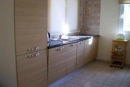Кухня. Кипр, Каппарис : Уютная вилла с 3-мя спальнями, с бассейном и частным двориком с патио, расположена у красивейшего пляжа Malama Beach