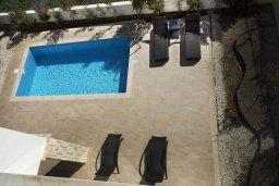 Бассейн. Кипр, Хлорака : Современная вилла с бассейном и зеленым двориком, 3 спальни, парковка, Wi-Fi
