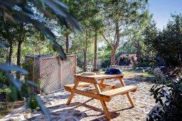 Территория. Кипр, Лачи : Шикарная вилла с видом на море, с 3-мя спальнями, с патио, барбекю, бильярдом и с большим бассейном в окружении соснового леса