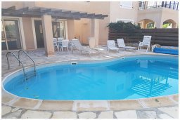 Бассейн. Кипр, Корал Бэй : Восхитительная вилла с бассейном и солярием на крыше, 4 спальни, 3 ванные комнаты, парковка, Wi-Fi