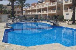 Бассейн. Кипр, Пафос город : Апартамент в комплексе с большим бассейном, с гостиной, отдельной спальней и террасой