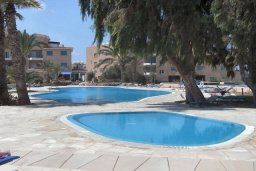 Бассейн. Кипр, Пафос город : Апартамент в комплексе с большим бассейном и зеленой территорией, с гостиной, отдельной спальней и балконом