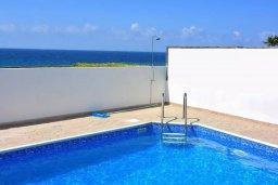 Бассейн. Кипр, Помос : Шикарная вилла с бассейном в 50 метрах от моря, 5 спален, 4 ванные комнаты, барбекю, парковка, Wi-Fi