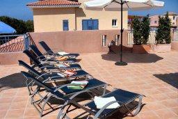 Терраса. Кипр, Пафос город : Пентхаус в комплексе с 2-мя бассейнами и зеленой территорией, с гостиной, тремя спальнями, патио и большой террасой на крыше