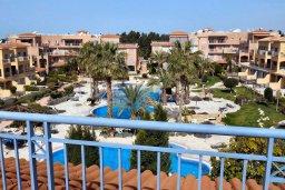 Вид. Кипр, Пафос город : Пентхаус в комплексе с 2-мя бассейнами и зеленой территорией, с гостиной, тремя спальнями, патио и большой террасой на крыше