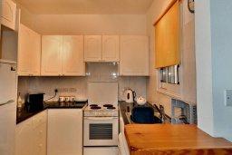 Кухня. Кипр, Пафос город : Апартамент в комплексе с бассейном и садом, с гостиной, двумя спальнями, двумя ванными комнатами и балконом