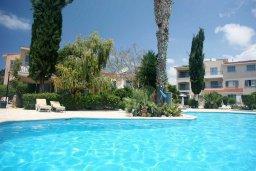 Бассейн. Кипр, Пафос город : Апартамент в комплексе с бассейном и садом, с гостиной, двумя спальнями, двумя ванными комнатами и балконом