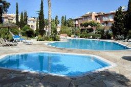Бассейн. Кипр, Пафос город : Апартамент в комплексе с бассейном и садом, с гостиной, двумя спальнями и террасой