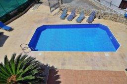 Бассейн. Кипр, Полис город : Прекрасная вилла с 3-мя спальнями, с бассейном, тенистой террасой с патио и барбекю