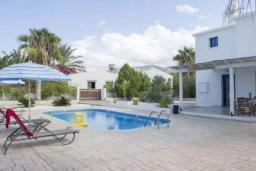 Бассейн. Кипр, Аргака : Симпатичная вилла с 3-мя спальнями, с бассейном, тенистой террасой с патио и барбекю, расположена на берегу моря в деревне Аргака