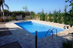 Бассейн. Кипр, Куклия : Прекрасная вилла с бассейном и зеленым двориком, 4 спальни, 2 ванные комнаты, барбекю, парковка, Wi-Fi