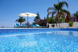 Бассейн. Кипр, Лачи : Роскошная вилла с бассейном возле пляжа, 3 спальни, 2 ванные комнаты, парковка, Wi-Fi