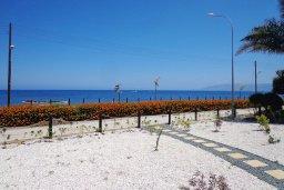 Территория. Кипр, Лачи : Роскошная вилла с бассейном возле пляжа, 3 спальни, 2 ванные комнаты, парковка, Wi-Fi
