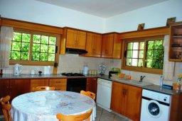 Кухня. Кипр, Си Кейвз : Прекрасная вилла с 3-мя спальнями, с бассейном, джакузи, просторным двориком с зелёным садом, с патио и барбекю, расположена в самом восхитительном месте среди банановых плантаций