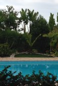 Бассейн. Кипр, Лачи : Роскошная вилла с бассейном и джакузи, 3 спальни, 2 ванные комнаты, барбекю, камин, парковка, Wi-Fi