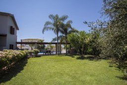 Территория. Кипр, Коннос Бэй : Роскошная вилла с 4-мя спальнями, с бассейном, зелёной территорией с патио и барбекю, расположена в тихом жилом районе мыса Cape Greco