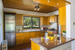 Кухня. Кипр, Коннос Бэй : Роскошная вилла с 4-мя спальнями, с бассейном, зелёной территорией с патио и барбекю, расположена в тихом жилом районе мыса Cape Greco