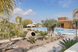 Территория. Кипр, Паралимни : Шикарный дом с большим бассейном и джакузи, 4 спальни, 2 ванные комнаты, сауна, камин, барбекю, парковка, Wi-Fi