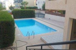 Бассейн. Кипр, Пиргос : Прекрасная вилла с 3-мя спальнями, с большим бассейном и детским бассейном, и с приватным двориком с патио