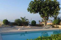 Бассейн. Кипр, Айос Тихонас Лимассол : Роскошные 3-спальные апартаменты прямо на пляже с невероятным захватывающим видом на море для 9-ти человек