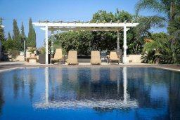 Бассейн. Кипр, Мазотос : Роскошная вилла с большим бассейном и зеленой территорией, 4 спальни, 5 ванных комнат, джакузи, домашний кинотеатр, кабинет, барбекю, детская площадка, парковка, Wi-Fi