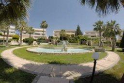 Территория. Кипр, Айос Тихонас Лимассол : Эксклюзивный апартамент на берегу моря с 3-мя спальнями, расположен в комплексе с бассейном, теннисным кортом и садом