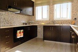 Кухня. Кипр, Лачи : Прекрасная вилла с панорамным видом на море и гавань Лачи, с 3-мя спальнями, с красивым зелёным садом, патио, барбекю и с уютной меблированной террасой на крыше