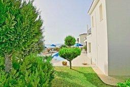 Территория. Кипр, Аргака : Прекрасная вилла с 4-мя спальнями, с бассейном и двориком, расположена в Пафосе для 8-ти гостей