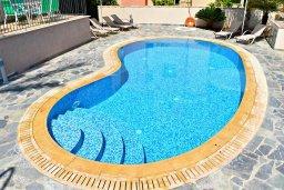 Бассейн. Кипр, Аргака : Великолепная вилла с видом на море, с 3-мя спальнями, с бассейном, ландшафтным садом, джакузи и террасой на крыше