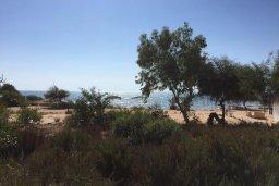 Территория. Кипр, Ионион - Айя Текла : Прекрасная вилла с бассейном напротив пляжа и с видом на море, 3 спальни, 2 ванные комнаты, парковка, Wi-Fi