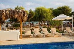Зона отдыха у бассейна. Кипр, Ионион - Айя Текла : Прекрасная вилла с бассейном напротив пляжа, 4 спальни, 3 ванные комнаты, парковка, Wi-Fi