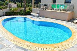 Бассейн. Кипр, Аргака : Прекрасная вилла с бассейном и джакузи, 100 метров до пляжа, 3 спальни, 2 ванные комнаты, игровая комната, патио, барбекю, парковка, Wi-Fi