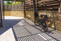 Территория. Кипр, Пиргос : Прекрасная вилла с бассейном в 100 метрах от пляжа, 3 спальни, 2 ванные комнаты, парковка, Wi-Fi
