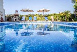Бассейн. Кипр, Корал Бэй : Роскошная вилла с бассейном и зеленым двориком, 3 спальни, 2 ванные комнаты, барбекю, парковка, Wi-Fi