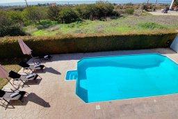 Бассейн. Кипр, Пейя : Шикарная вилла с бассейном и зеленым двориком с барбекю и настольным теннисом, 2 гостиные, 4 спальни, 4 ванные комнаты, парковка, Wi-Fi